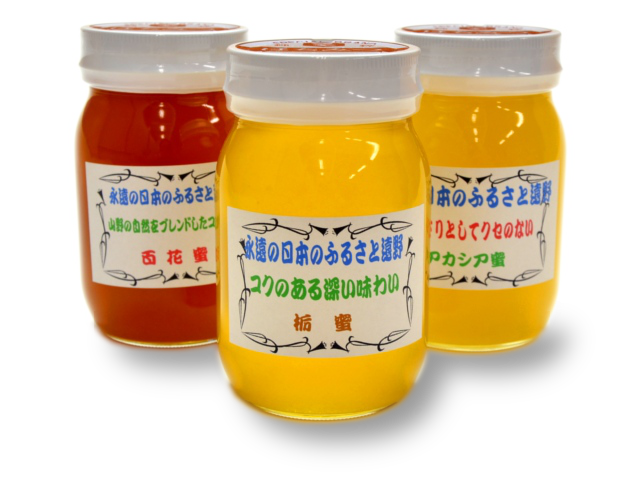 馬場さんの蜂蜜「遠野産はちみつ各種」(600g)【送料無料】